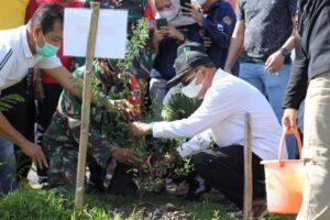 Bupati dan Ketua TP PKK Terus Melakukan Penanaman Pohon Untuk Mewujudkan Jeneponto Hijau